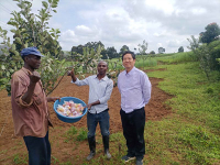 2021年5月25日,邓亮斌在布隆迪卡杨扎省指导的高原苹果引_094306.jpg