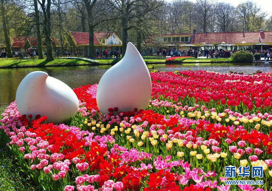 Keukenhof Le Jardin Des Tulipes